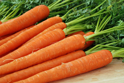 Imagini pentru morcovi